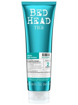 BH Urban Anti-dotes Recovery  Шампунь для поврежденных волос 2 уровень, 250 мл