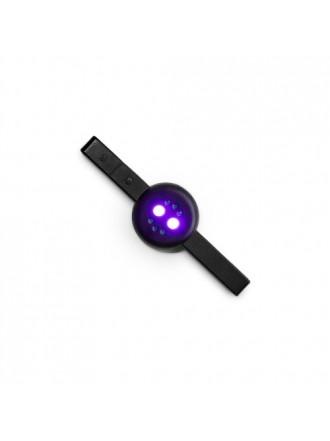 Мультимагнит SS + UV лампочка 6W
